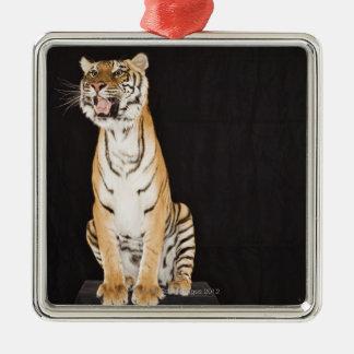 Tiger roaring Silver-Colored square decoration