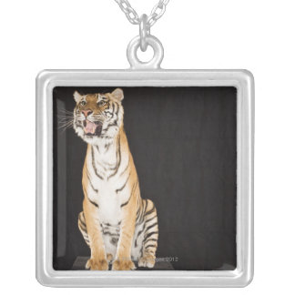 Tiger roaring square pendant necklace