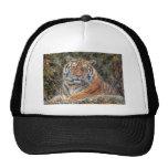 Tiger Royal in Snow Ball Cap