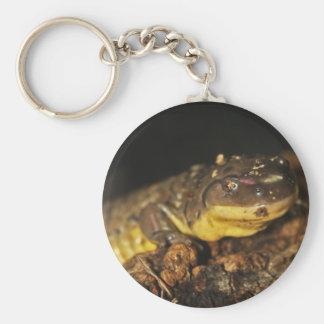 Tiger Salamander Key Chain