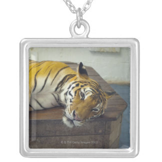 Tiger, Samui, Thailand Silver Plated Necklace