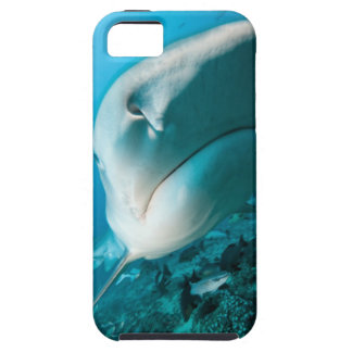 Tiger shark (Galeocerdo cuvier) Shark feed Case For The iPhone 5