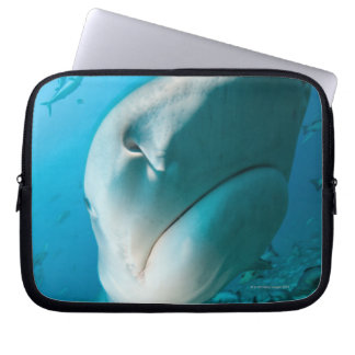 Tiger shark (Galeocerdo cuvier) Shark feed Laptop Sleeve