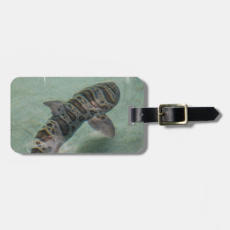 Tiger Shark Luggage Tag