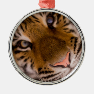 Tiger Silver-Colored Round Decoration