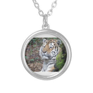 Tiger Silver Plated Necklace