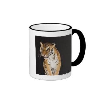 Tiger sitting on platform 2 ringer coffee mug