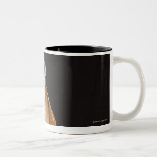 Tiger sitting on platform 2 Two-Tone coffee mug