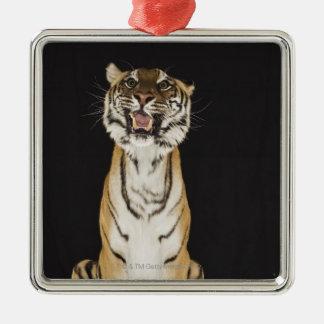 Tiger sitting on platform christmas ornament