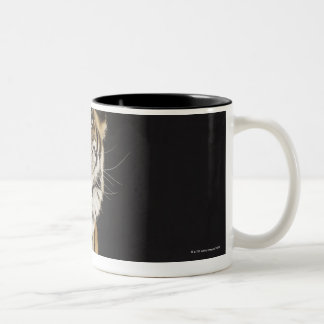 Tiger sitting on platform Two-Tone coffee mug