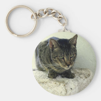 Tiger Six Toe Basic Round Button Key Ring