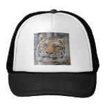 Tiger Smile Ball Cap Mesh Hat