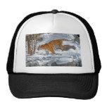 Tiger Snow Gallop Ball Cap