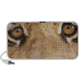 Tiger iPhone Speaker