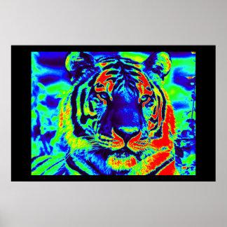 Tiger Spirit Poster