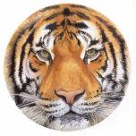 """""""Tiger Spot"""" Tiger Face Watercolor Art Cut Out"""
