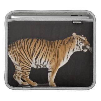 Tiger standing on platform iPad sleeve