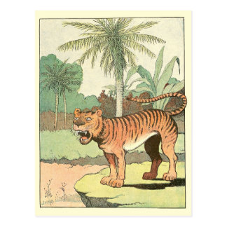 Tiger Story Book Post Cards