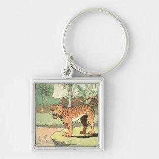 Tiger Storybook Keychain