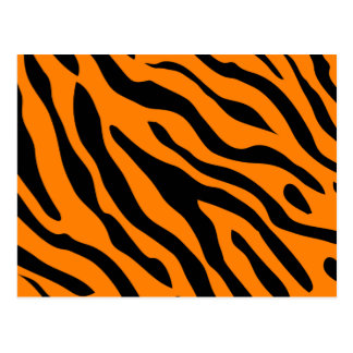 Tiger Stripe post cards