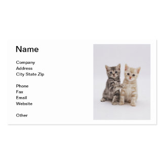 Tiger Striped Kittens Business Card