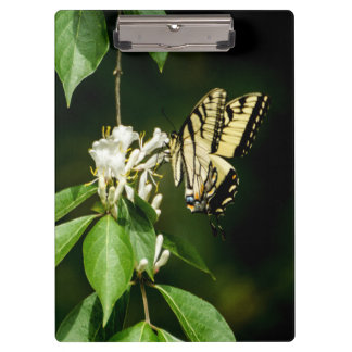 Tiger Swallowtail Butterfly Clipboard