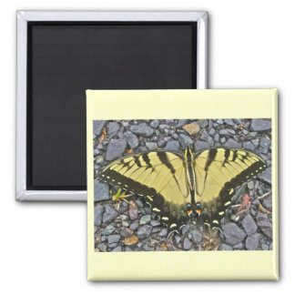 Tiger Swallowtail Butterfly Each Day is a Gift Magnet