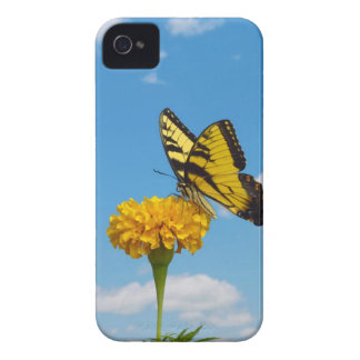 Tiger Swallowtail Butterfly on a Flower Case-Mate iPhone 4 Cases