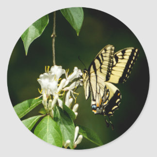 Tiger Swallowtail Butterfly on Honeysuckle Sticker