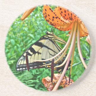 Tiger Swallowtail Butterfly on Turk's Cap Lily Beverage Coaster