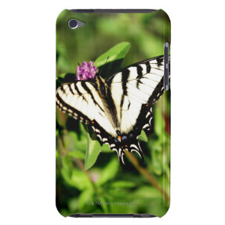 Tiger Swallowtail Butterfly. Papilio glacus. iPod Case-Mate Case