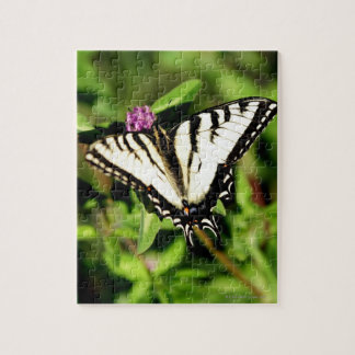 Tiger Swallowtail Butterfly. Papilio glacus. Jigsaw Puzzle