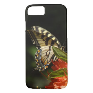 Tiger Swallowtail Case
