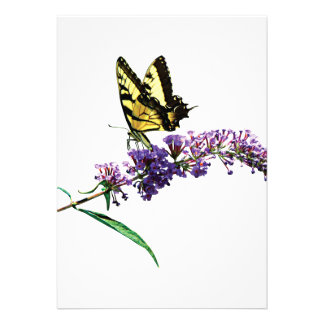 Tiger Swallowtail on Purple Butterfly Bush Custom Invitation