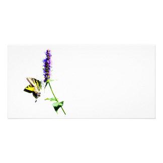 Tiger Swallowtail on Purple Salvia Photo Card Template