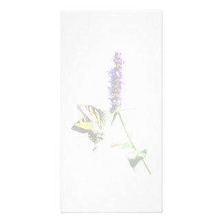 Tiger Swallowtail on Purple Salvia Photo Greeting Card