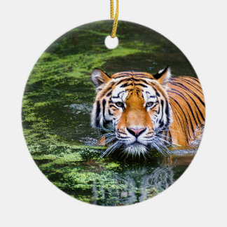 Tiger Swimming Christmas Ornament