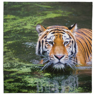 Tiger Swimming Napkin