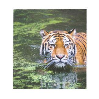 Tiger Swimming Notepad