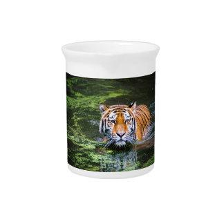 Tiger Swimming Pitcher