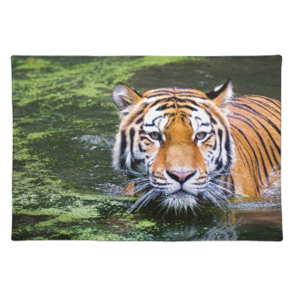 Tiger Swimming Placemat