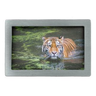 Tiger Swimming Rectangular Belt Buckle