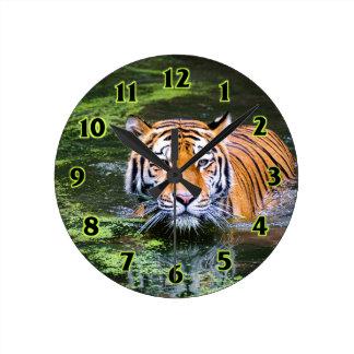 Tiger Swimming Round Clock