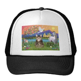 Tiger Tabby Cat  - Fantasy Land Cap