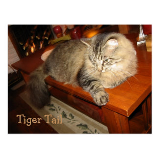 Tiger Tail Postcard