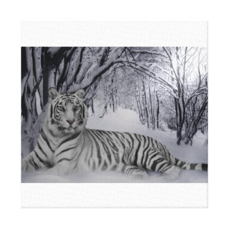 Tiger tales of a winters night canvas print
