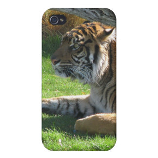 Tiger Tiger iPhone 4/4S Case