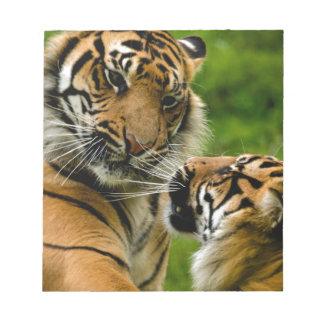 Tiger tiger notepad