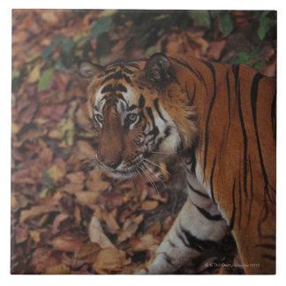 Tiger Walking on Dead Leaves Large Square Tile