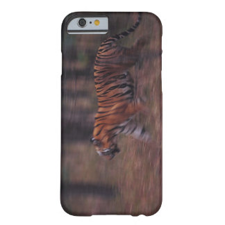 Tiger Walking through Forest Barely There iPhone 6 Case